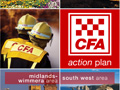CFA Action Plan 2004-2005